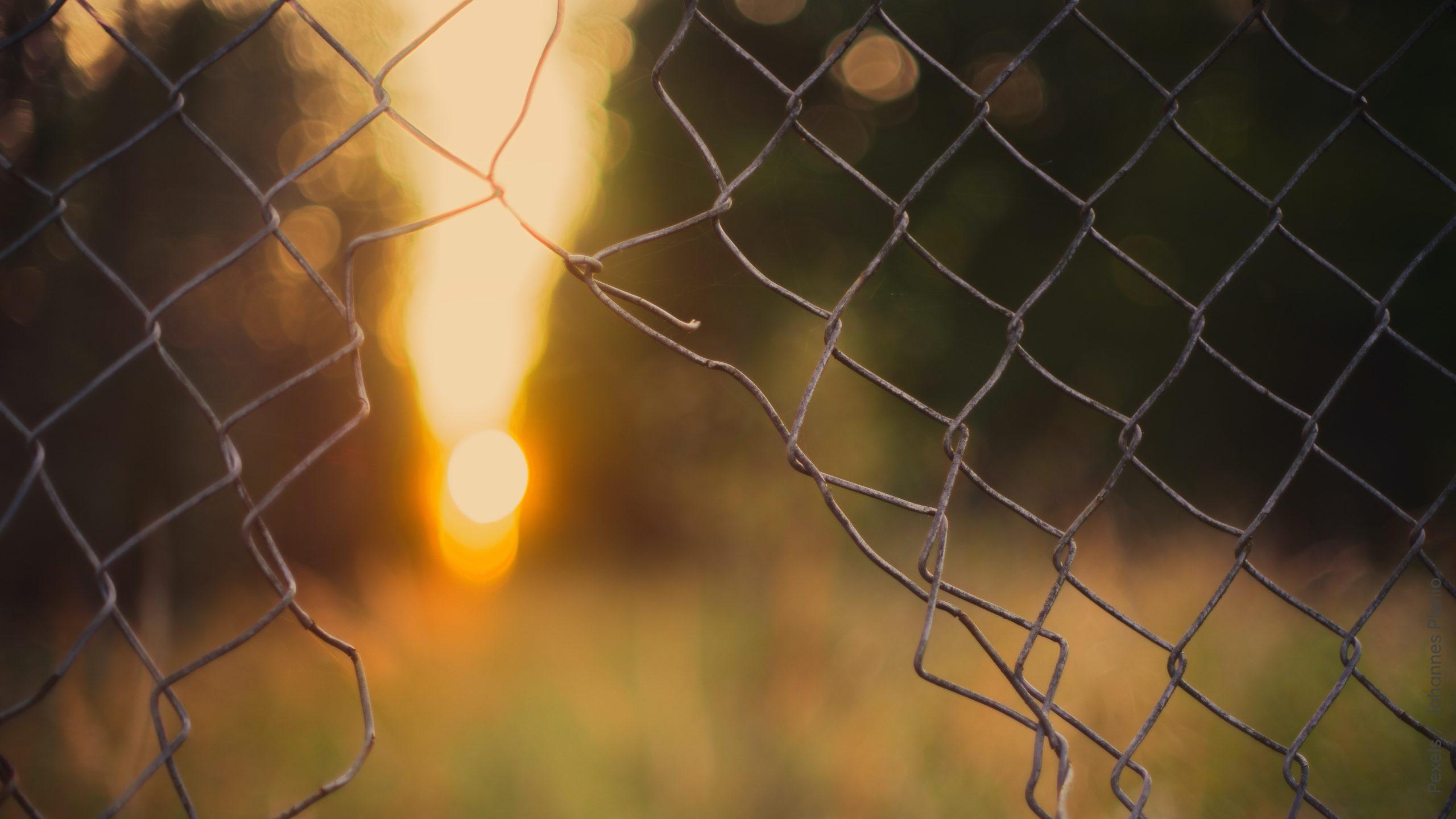 Maschendrahtzaun mit Lücke grey wire fence