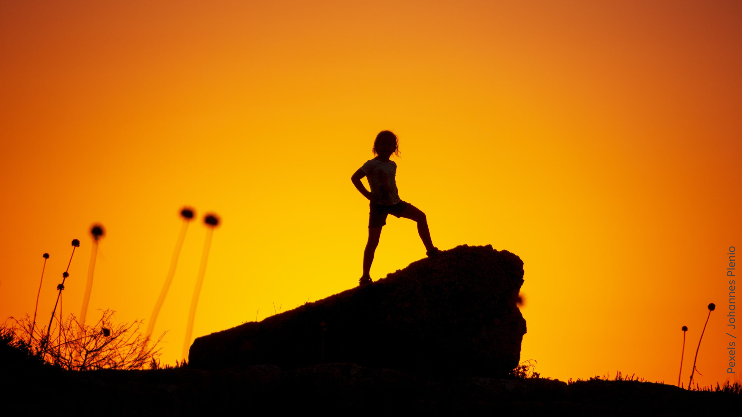 Kind auf Felsen silhouette photography of kid